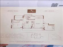 文化片区低密度豪宅中南林樾香庭188平 四开间朝南 4室2厅3卫 精装修