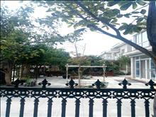 金枫花园别墅 258平方 院100平 位置佳  精装880万