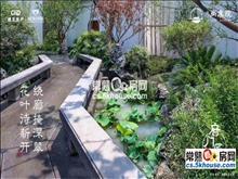 坐看假山美景中式园林建设尚虞院198万3室2厅2卫毛坯看花园的中心