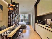 星光天地旁 豪装公寓 领包入住 2房2厅 可贷款