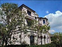 江南       独具特色 自然资源       和谐 780平 仅售1780万 低于售楼处价格