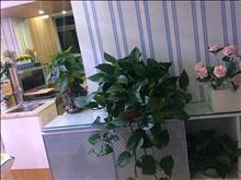 世茂75号公馆 2600元/月 2室1厅1卫 精装修 小区安静低价出租