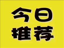 中南锦苑 63平 精装修 2房1厅1卫 楼层好 小孩初三
