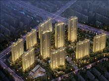 碧桂园 144平方  4室2厅2卫 精装修 有名额  275万