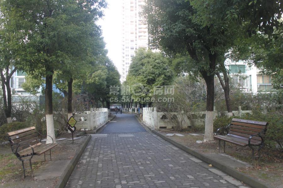 单价1.6万富鑫苑 170万 3室2厅1卫 精装修 绝对好位置绝对好房子
