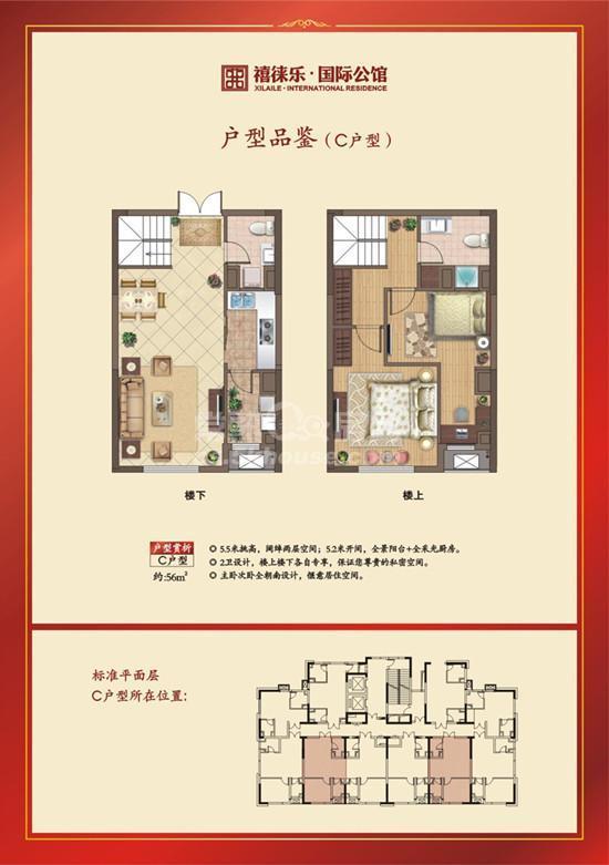 禧徕乐国际公馆户型图(4)