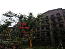 淀山湖 上海湾,6合院式小别墅,超低价急售