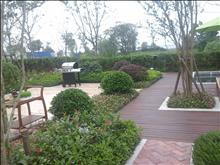 坐看假山美景,長泰淀湖觀園 1000萬 6室2廳5衛 毛坯 ,看花園的中心