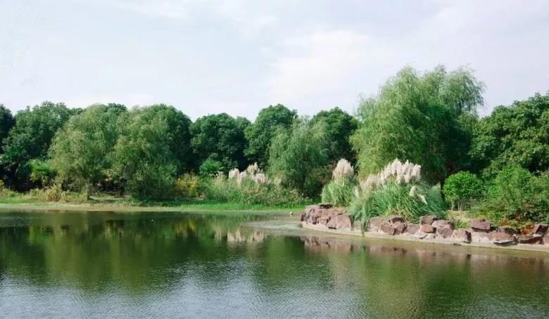 是昆山除森林公园之外最大的城市生态公园,就在该楼盘不远处.