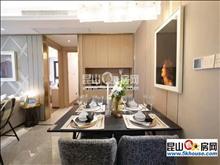 花桥品质最高 浦西玫瑰园天誉名邸 160万 精装修2房