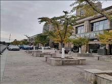 沿沪大道国际华城商铺出租 面积100到300平米不等 租金6万…