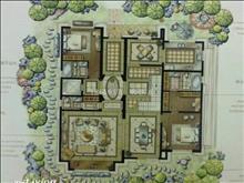九扬香郡 超正户型  景观楼层宽阔视野  看房随时