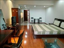 衡山城国际花园 1800元月 1室1厅1卫 精装修 ,正规好房型出租