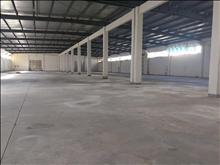晨丰路纯一层1700平方厂房出租配电充足层高8米