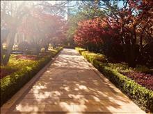 花桥浦西玫瑰园,面积71109平米之间,融创高端住宅,高层洋房均在售