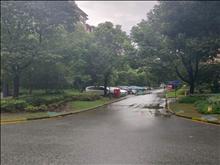 悅上海 2000元月 5室2廳2衛,5室2廳2衛 簡單裝修