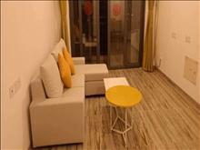 碧桂园精装3房出租,超低价,家电家具齐