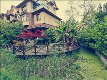 剛剛掛牌,紫怡花園,5個套房,四房朝南,南面臨河,隨時看房