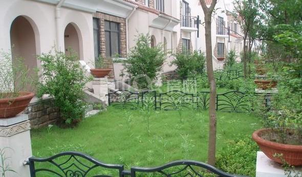 上海产权 绿地21城区 丽水名邸 148平精装修 300万 随时看房