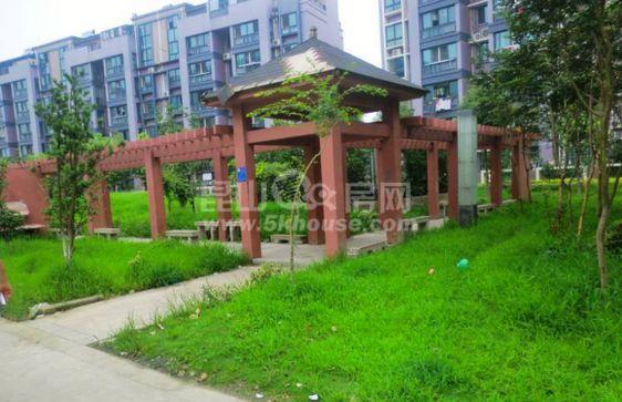 张浦玫瑰园