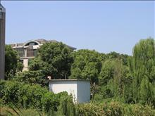 阳明欧洲花园实景图(2)