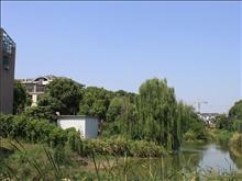 阳明欧洲花园实景图(1)