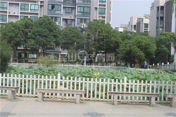 玫瑰苑100平南北通透三房 景观楼层 首付30万