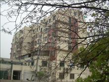 小区很少在卖的2房同心花园 毛坯价145万,中间好楼层