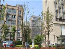 安居巴比伦国际广场 55万 1室1厅1卫 精装修 让你惊喜不断