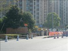 中心区,低于市场价,世茂东壹号 345万 5室2厅2卫 精装修