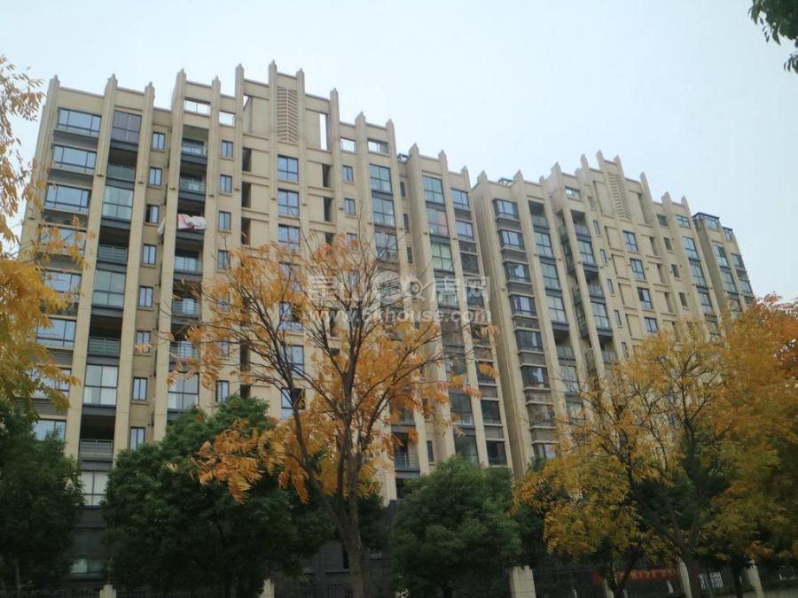世家 159万 3室2厅1卫 毛坯 急售好房不等人,抓紧时间下手