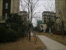 碧悦湾实景图(14)