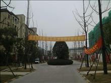 碧悦湾实景图(4)