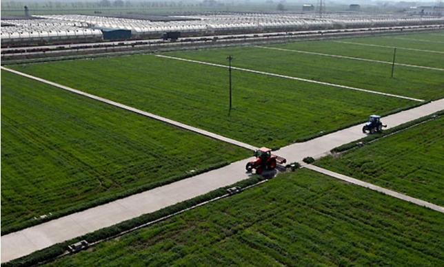 张家港市入选首批全国农村社区治理实验区