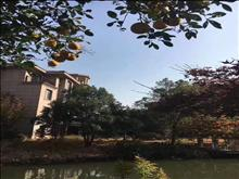 帝景豪园独栋别墅 753平方+超大院子+双汽车库 新空房 满二年  2200万