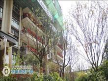 [一手房代理]拼手速碧桂园凤凰台金楼层117+产权车位三室二厅185万元