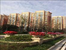 新航花苑8楼99.8平米+自新空房售价99万