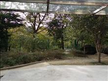 清水湾 精装二室一厅1楼带院子景观房加车位包物业费2.8万一年