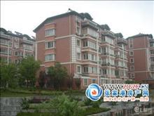 超大社区罕见户型,苏华新村 235万 2室2厅0卫 精装修