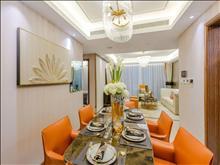 清水湾 一室精装酒店是装潢 住的室享受 甜蜜享受二人世界
