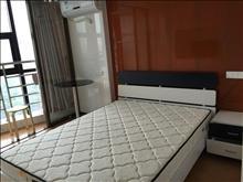 q缇香广场7楼单身公寓 精装设施齐全 20000元/年