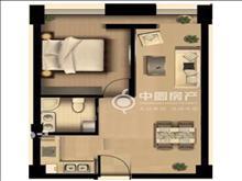 东方新天地 58平单身公寓 自住理想之选