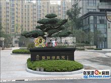 暨阳湖皇冠