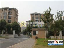 长江桂园独立别墅383平,土地面积552平680万