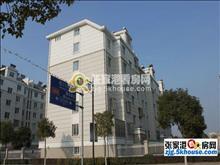 振丰苑 541元/月 2室1厅1卫 简单装修 超大阳台,小区有泳池