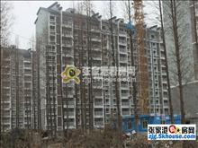 大新新东社区 楼层好,视野广,交通便利,居住首选