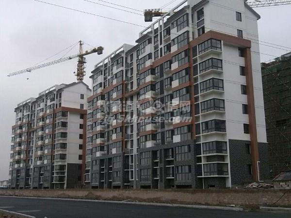 新南社区 81万 3室2厅2卫 毛坯 ,绝对好位置绝对好房子