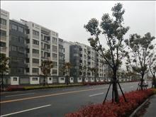 年丰新村11楼135平,3室2厅2卫,毛坯,52万