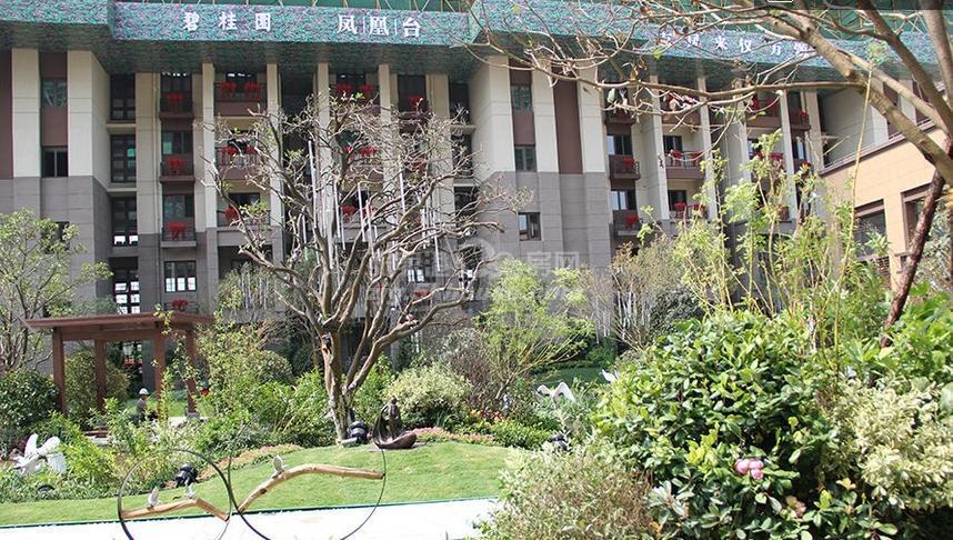 碧桂园凤凰台