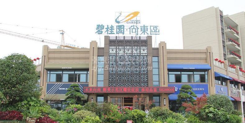 碧桂园尚东区